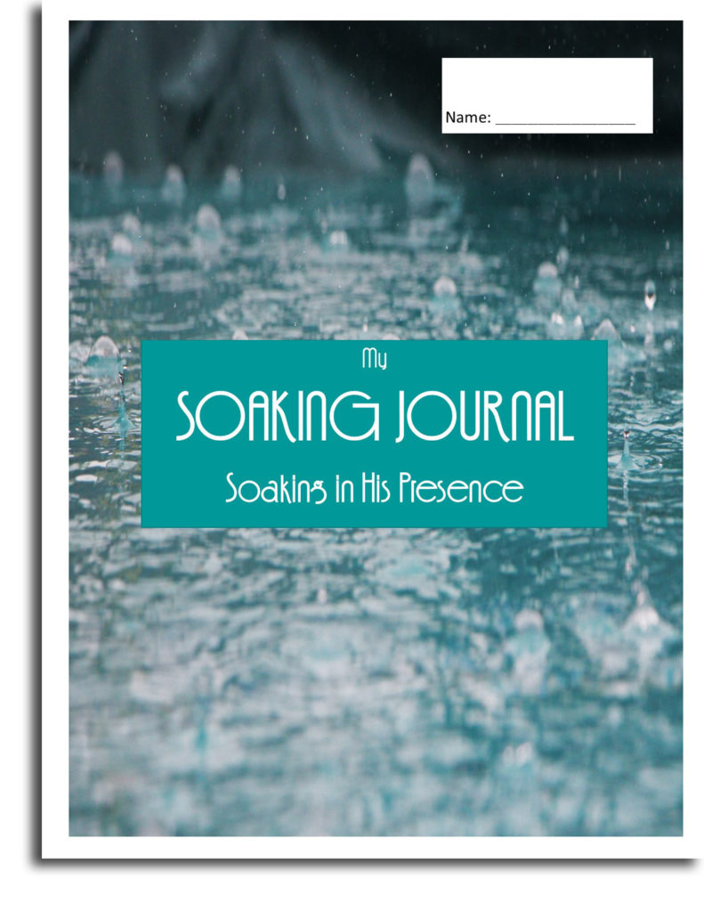 Soaking Journal Cover